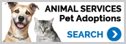 Go to Ventura County Animal Services Find a Pet to Adopt Page